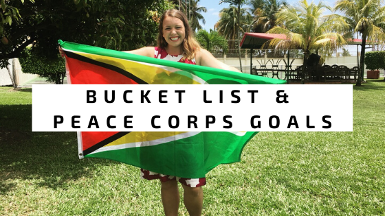 Ambitions for Peace Corps
